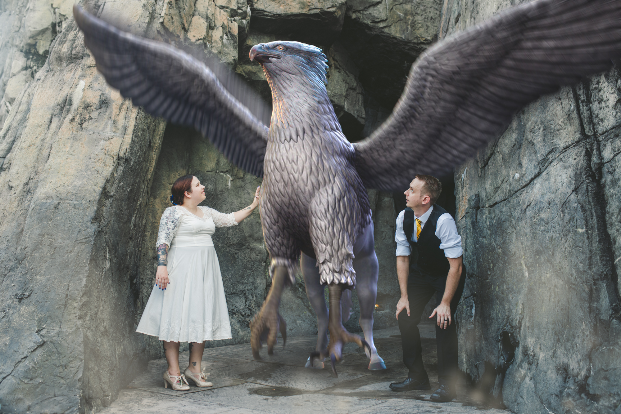 Hippogriff Wizarding World